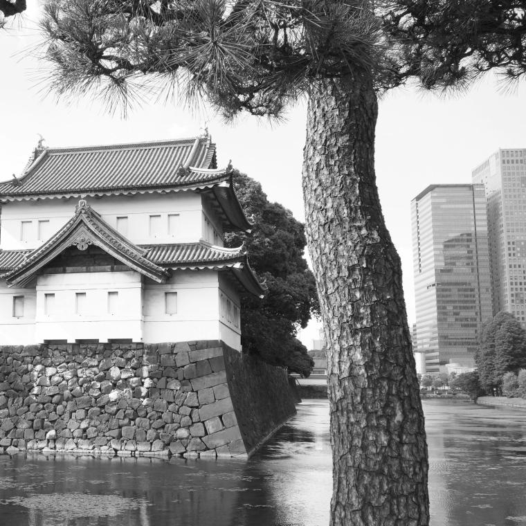 Tokyo_contrasts