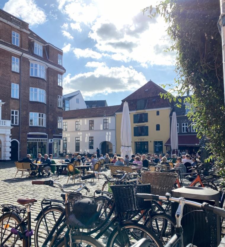 Pulstervig torv Aarhus