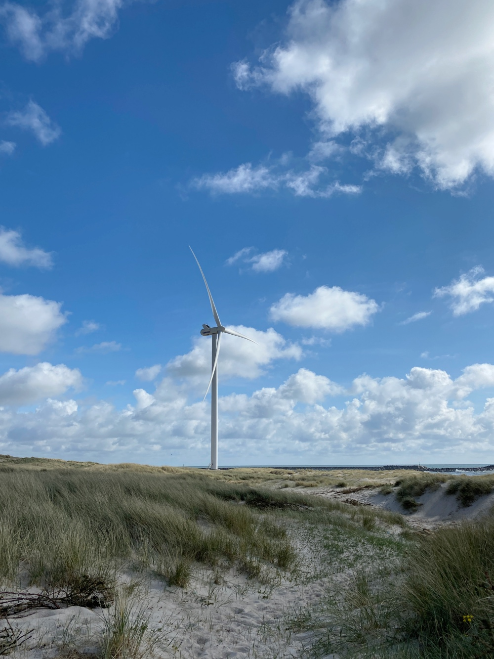 Wind park in Hvide Sande Denmark