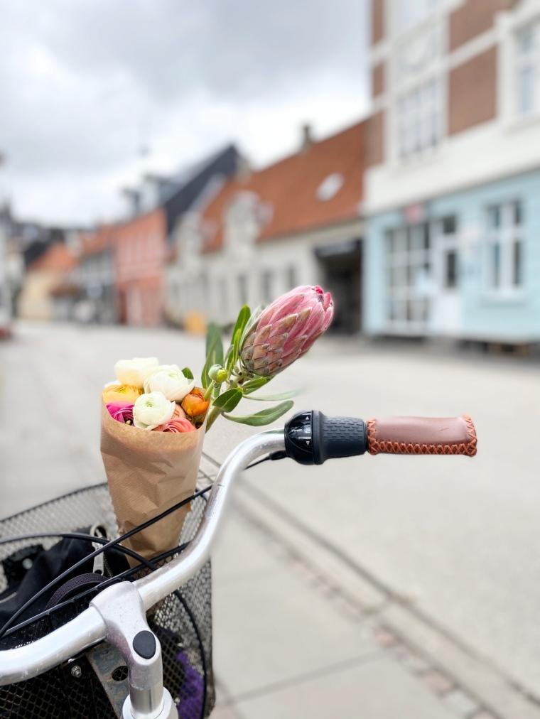 Latinerkvarteret Aarhus_